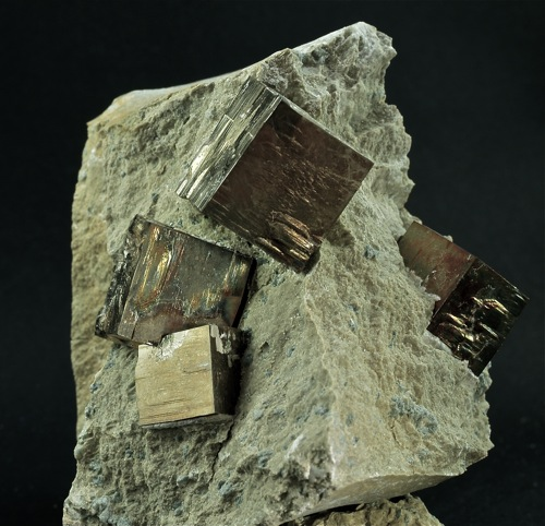 Pyrites in matrix